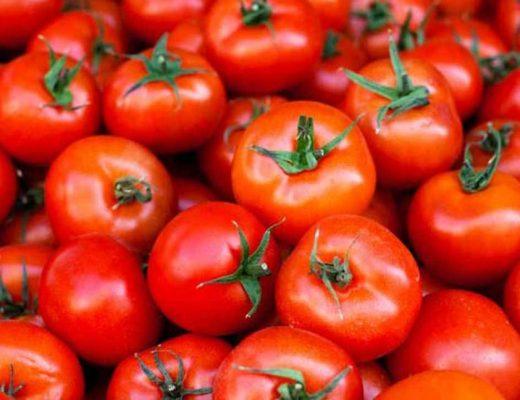 mơ thấy bán cà chua